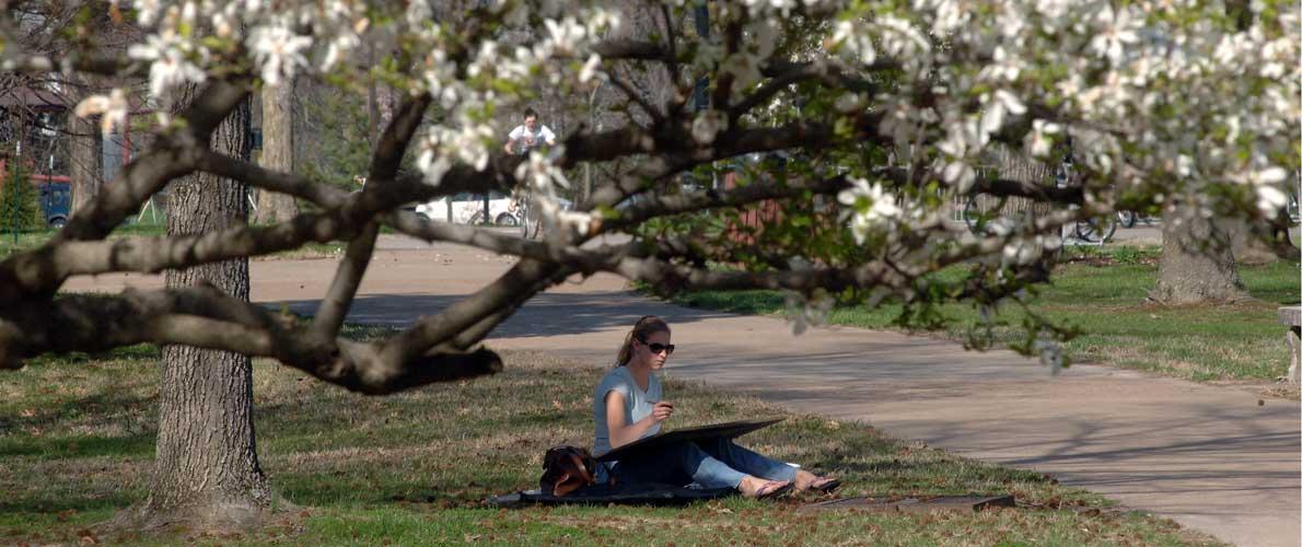 campus springtime