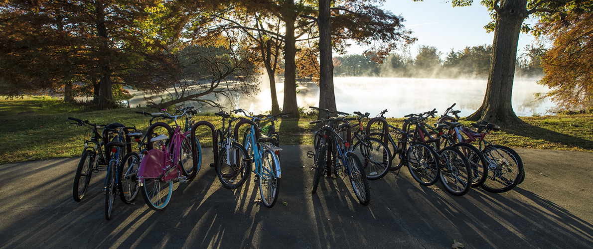 bike rack by lake