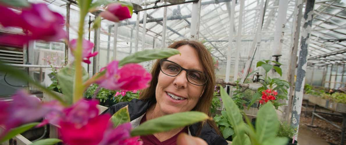 Lady looking at flowers in green house